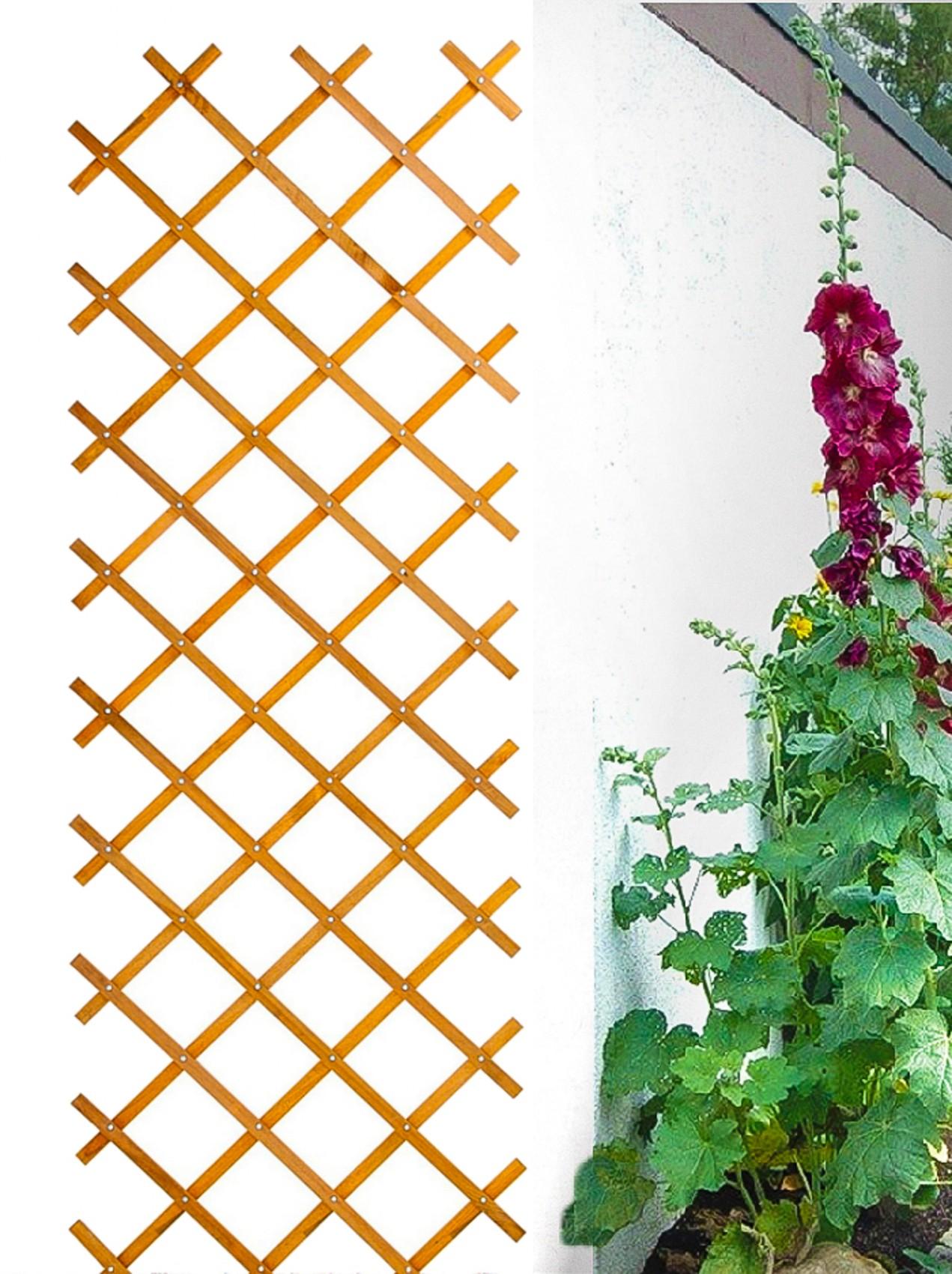 rankgitter rankhilfe rosengitter scherengitter spalier. Black Bedroom Furniture Sets. Home Design Ideas